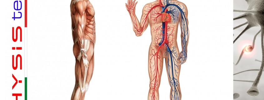 Physis Tech - Trattamenti per la salute