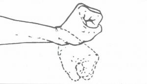 Flessibilità del polso